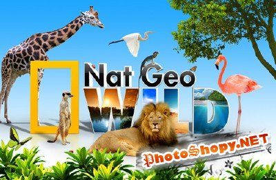 Nat Geo Wild wallpaper psd