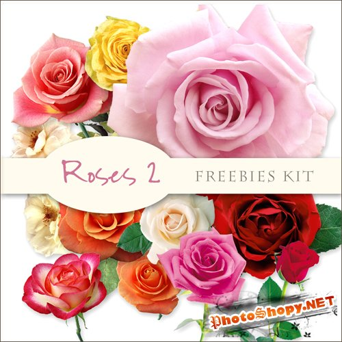 Scrap-kit - Roses Images #2