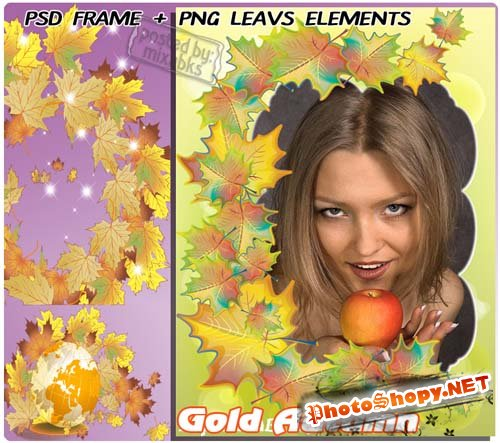 Красавица Осень | Gold Autumn (psd frames + png elements)