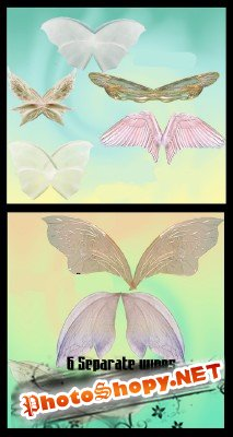 Butterfly wings pack # 2