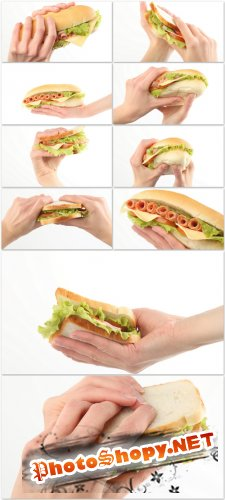 Photo Cliparts - Sandwich In Hand