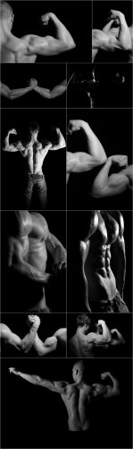 Photo Cliparts - Bodybuilding