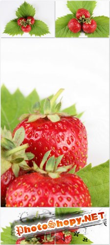 Photo Cliparts - Strawberry