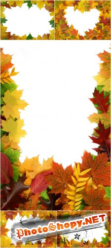 Photo Cliparts - Frame autumn leaves