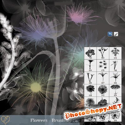 Flowers Brush Pack