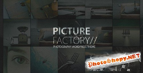 ThemeForest - Picture Factory - Photography Portfolio WP Theme