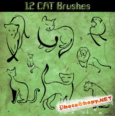 Cat Brushes
