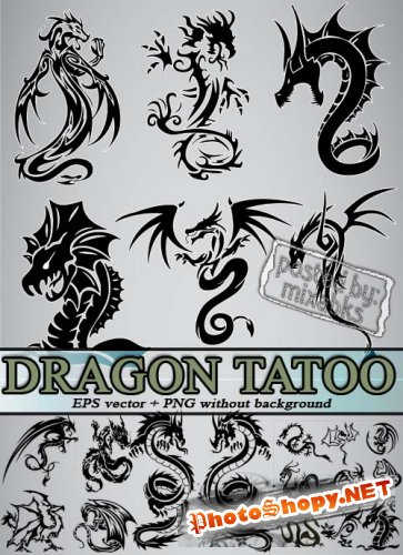 Татуировки Дракон | Dragon Tatoo (eps vector + png)