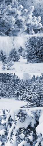 Stock Photos-Winter snow backgrounds