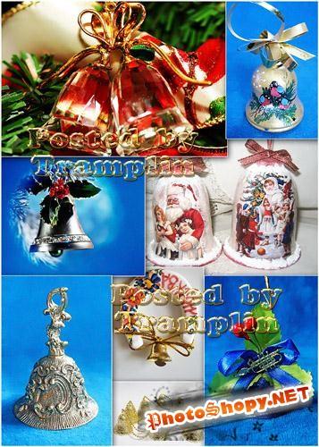 Рождественские колокольчики  - Christmas campanulas