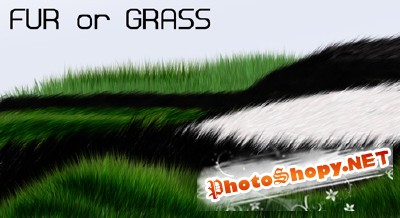 Grass or Fur brushes for Photoshop