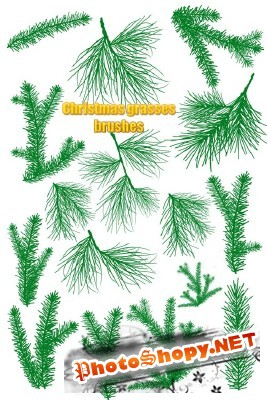 Grasses Christmas Brushes