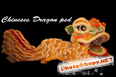 Dragon Chinese psd