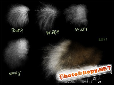 Fur brushes set for Photoshop
