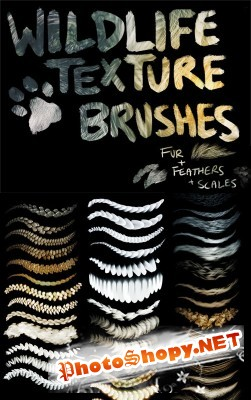 Wildlife  brushes for Photoshop