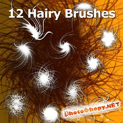 12 hairy brushes