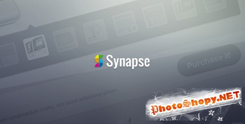 ThemeForest - Synapse - Corporate HTML Theme - Rip