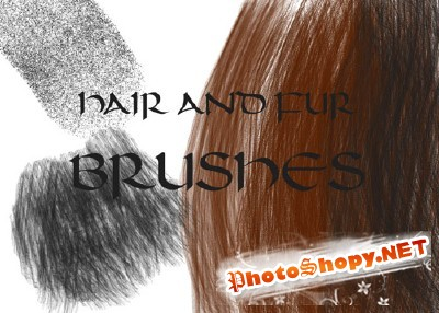Hair and Fur Brushes set for Photoshop