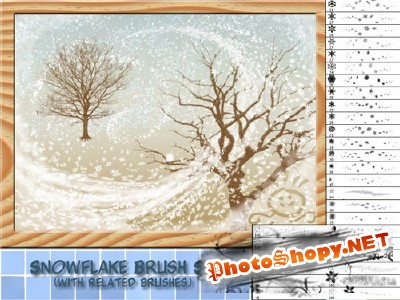 Snowflake brushes set for Photoshop