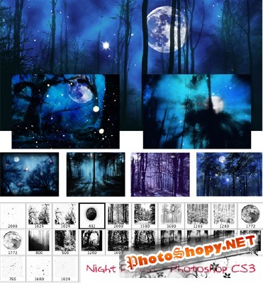Night forest brushes for Photoshop