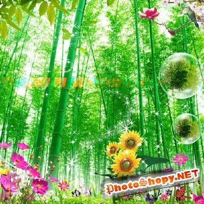Beautiful spring nature for Photoshop