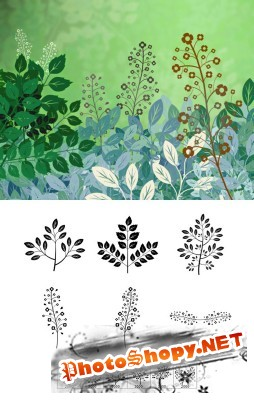 Forest Flora Brushes Set for Photoshop