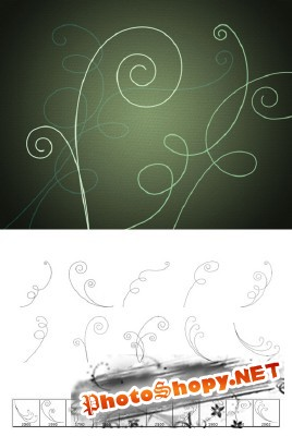 Vine Swirls Brushes Set for Photoshop