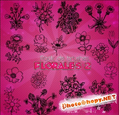 Pack De Brushes Florales 2 for Photoshop