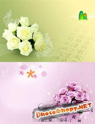 Beautiful Roses Psd Template for Photoshop