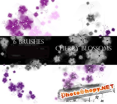 Cherry Blossoms Photoshop Brushes