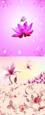 Sources For Photoshop - Pink spring flowers