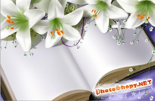 books and lily psd