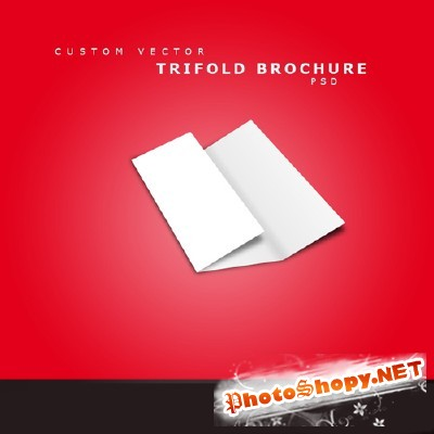 Custom Vector Brochure Psd for Photoshop