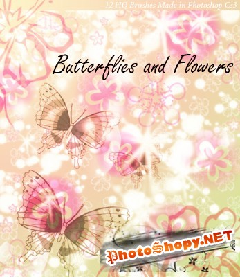 Butterflies And Flowers Brushes Set