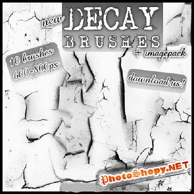 Decay Brushes Set