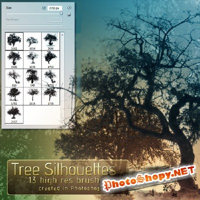 Tree silhouette brushes