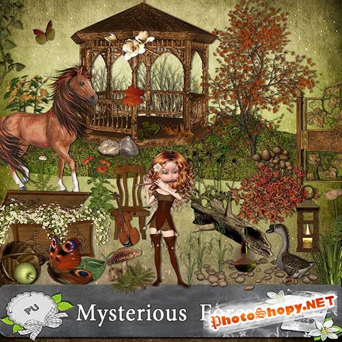 ����� ����� Mysterious Forest - ������������ ���