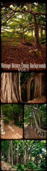 Vintage Nature Cruise Backgrounds Vol.1