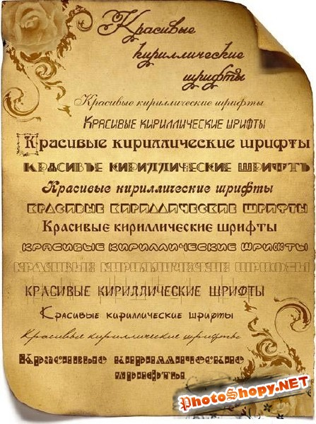 Set of 300 Cyrillic Fonts