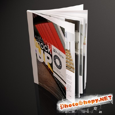 Professional Magazine Catalog Mock Up Vol 2