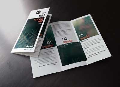 Trifold Mock-Up vol 2