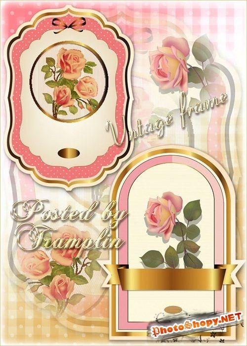 Исходники винтажных рамок с розами и золотым обрамлением, лентой и бантиком
