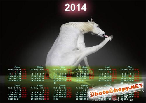 Красивый календарь - Прикольная белая лошадка