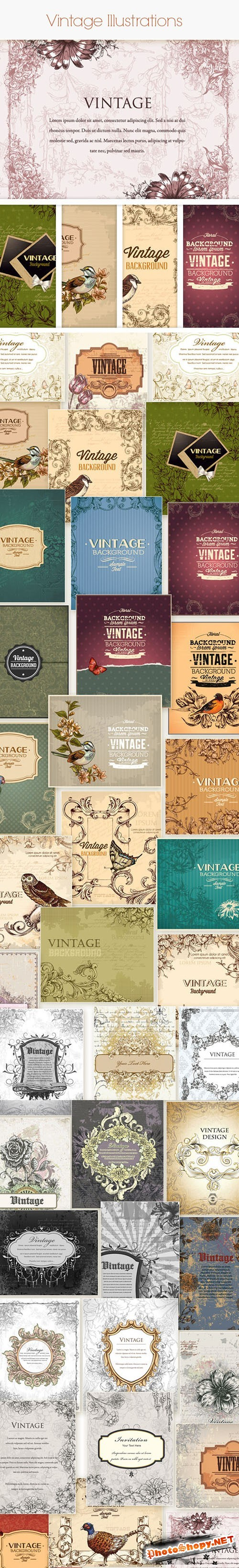 Vintage Vector Stock Illustrations Bundle