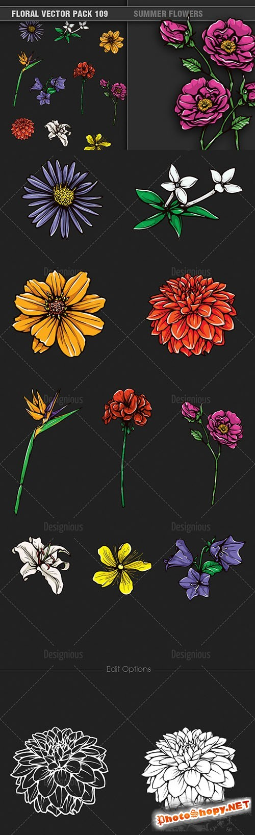 Summer Flowers Vector Illustrations Pack 109