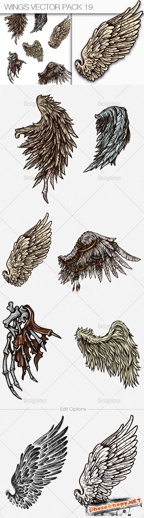 Wings Vector Illustrations Pack 19