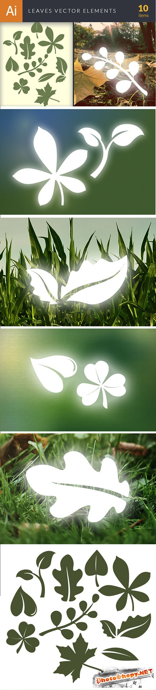 Simple Leaves Vector Elements Set 2