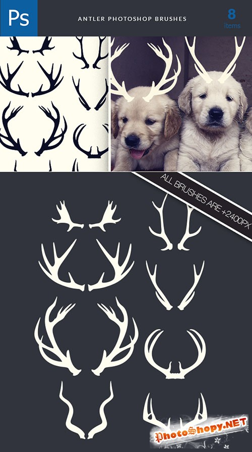 Antlers Photoshop Brushes Pack 1