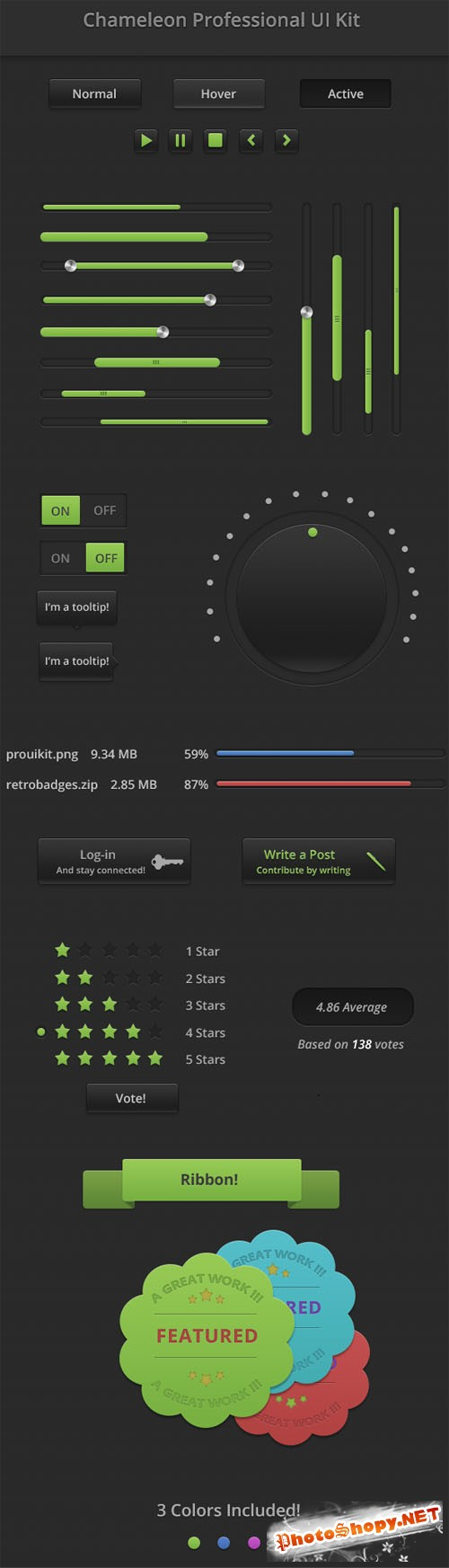 Chameleon Professional User Interface PSD Template