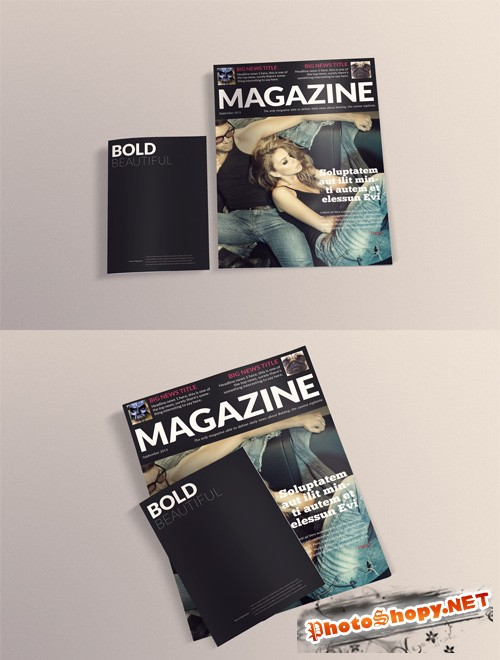 A4 and A5 Magazines Mock up PSD
